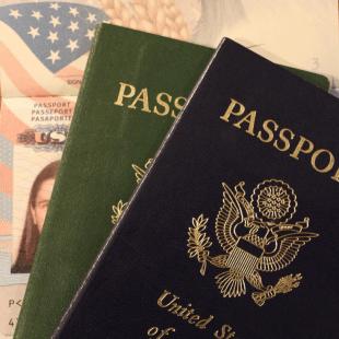 דרכון כחול דרכון ירוק